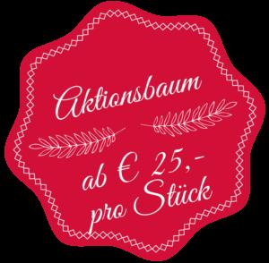 Aktionsbaum schon ab € 25,- pro Stück beim Weihnachtsbaumschlagen erhältlich.